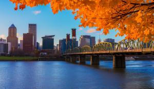 Portland Oregon in the fall with orange tree framing view across the river